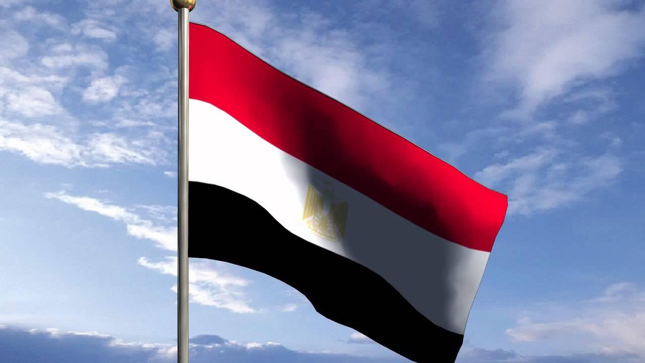 استعلم عن رقم جواز سفر مصري