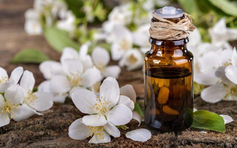 فوائد زيت الياسمين وأهم استخداماته للبشرة والجسم