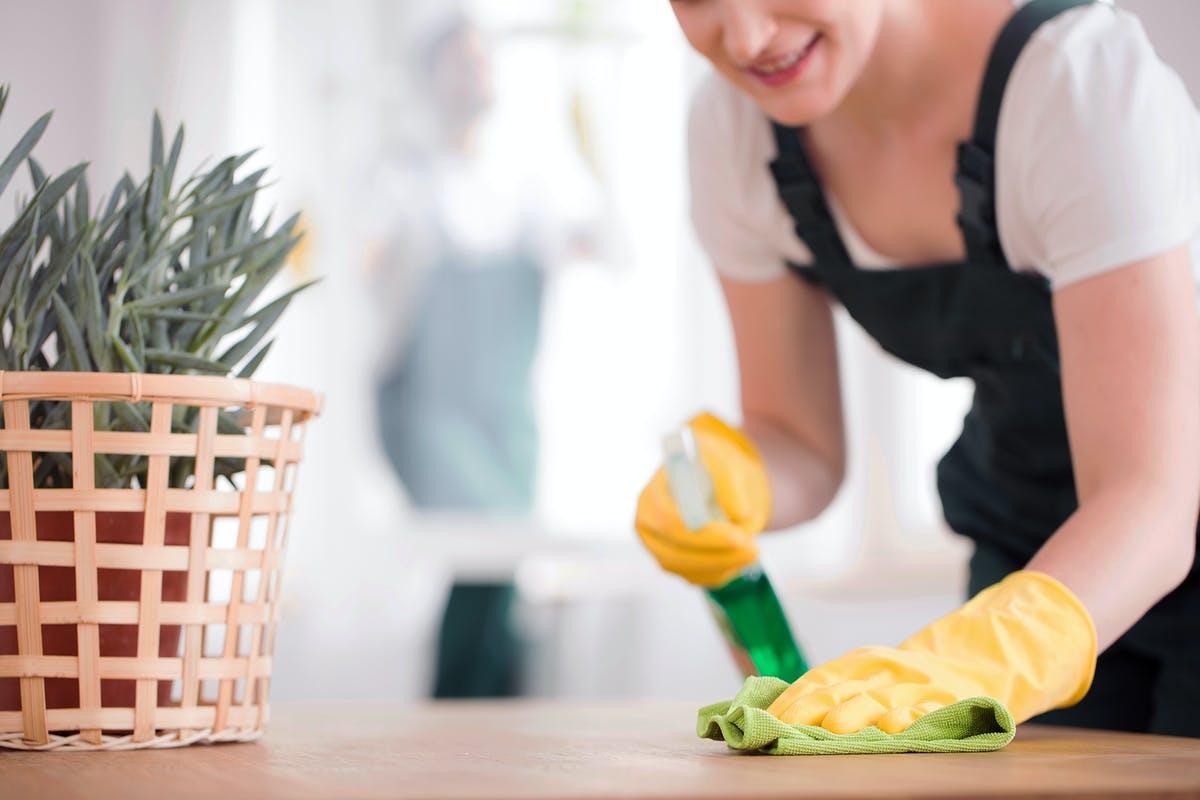 طريقة استقدام عاملة منزلية عبر مساند